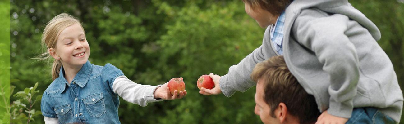 leistungen-behandlungsangebote-kinder-jugendliche